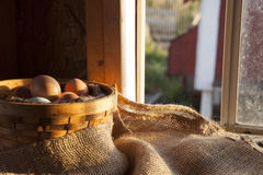 Яичка фермы свежие в корзине в курятнике Стоковые Изображения