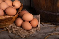 Яичка цыпленка Брайна Стоковые Фотографии RF
