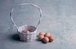 Яичка цыпленка в белой корзине 2 всех пасхального яйца принципиальной схемы цыпленока ведра цветут детеныши покрашенные травой по Стоковая Фотография