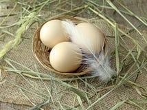 Яичка цыпленка в корзине wicker Стоковые Фото