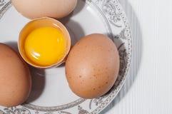 Яичка цыпленка в плите Стоковое Фото