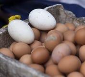 Яичка цыпленка на рынке стоят в Ханое Вьетнаме Стоковые Изображения