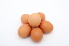 яичка цыпленка Стоковое Фото