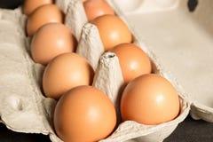 Яичка цыпленка в картонной коробке Стоковая Фотография