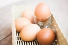 Яичка цыпленка в корзине Стоковые Фото