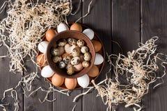 Яичка цыпленка и триперсток Стоковые Фотографии RF