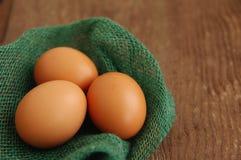 3 яичка цыпленка коричневых в гнезде зеленого цвета от ткани Стоковые Изображения RF