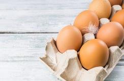 яичка цыпленка коробки Стоковое Изображение RF