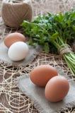 Яичка цыпленка, пук петрушки и шпагат Стоковая Фотография