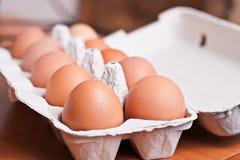 Яичка цыпленка Стоковое Изображение
