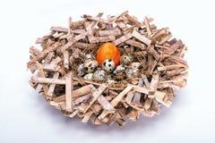 Яичко в гнезде Стоковые Изображения