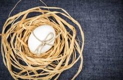 Яичко в предпосылке сини гнезда Стоковое фото RF