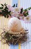 Яичко в украшении пасхе гнезда Стоковые Изображения RF