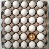 яичко золотистое Стоковые Изображения RF