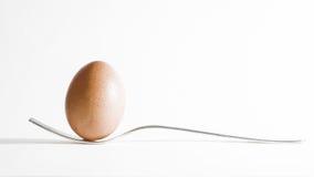 Яичко и вилка стоковые изображения rf