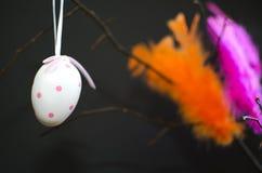 Яичко и покрашенные пер на черноте стоковое изображение rf