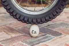 Яичко - кальций, под тяжелым колесом велосипеда не ломает Сила концепции расчета стоковое изображение rf