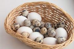 яичко корзины Стоковые Фото