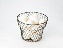 яичко корзины eggs провод сбора винограда Стоковое Изображение