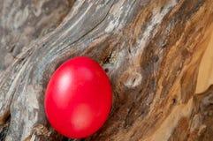 Яичко красного цвета пасхи Стоковая Фотография