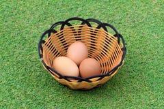 Яичко курицы в свежей траве весны Стоковая Фотография