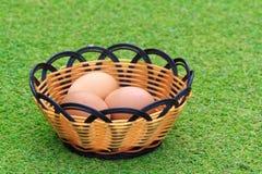 Яичко курицы в свежей траве весны Стоковая Фотография RF