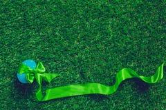 Яичко на зеленой траве Стоковое Изображение