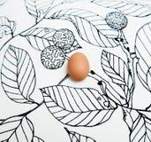 Яичко на черно-белой нарисованной предпосылке стоковое изображение