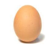 яичко одиночное Стоковые Фотографии RF