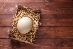 Яичко страуса на соломе в деревянной коробке, месте для формулировать, темная предпосылка Стоковое Изображение