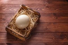 Яичко страуса на соломе в деревянной коробке, месте для формулировать, темная предпосылка стоковая фотография rf