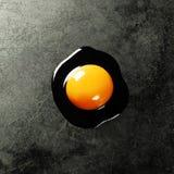 яичко сырцовое Стоковые Фотографии RF