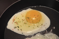 яичко сырцовое Стоковое Изображение