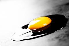 яичко сырцовое Стоковое Изображение RF