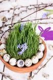 Яичко триперсток на траве Стоковое Фото