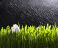 Яичко триперсток пасхи на зеленой траве Стоковые Фотографии RF