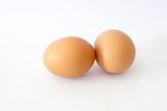 Яичко цыпленка Брайна изолированное на белизне Стоковые Фотографии RF
