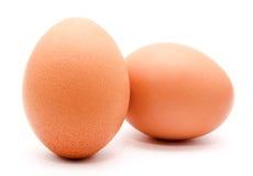 Яичко цыпленка Брайна изолированное на белой предпосылке Стоковые Изображения RF