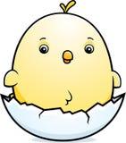 Яичко цыпленка младенца шаржа Стоковое фото RF