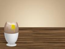 яичко чашки Стоковые Фотографии RF
