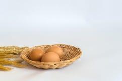 Яичко яичек 3 в корзине Стоковое Фото