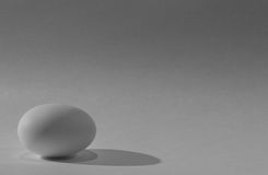 яичко Стоковое фото RF
