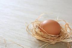 яичко стоковые изображения