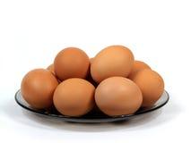 яичко стоковое изображение