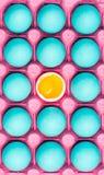 Яичный желток в сини eggs пастельная картина стоковое фото