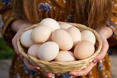Яйца в деревянной корзине на руках женщин стоковая фотография rf