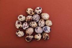 Яйца триперсток на коричневой твердой предпосылке, взгляде сверху, космосе экземпляра Здоровая еда, праздники, концепция природы  стоковые изображения