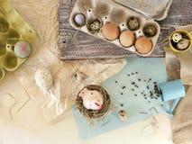 Яйца цыпленка и триперсток, цыпленок игрушки, сено, оформление пасхи стоковая фотография rf