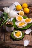 Яйцо сформировало гнезда меренги с творогом лимона традиционные печенья пасхи стоковые изображения rf