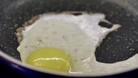 Яйцо цыпленка падает на горячий лоток, конец-вверх яичниц видеоматериал